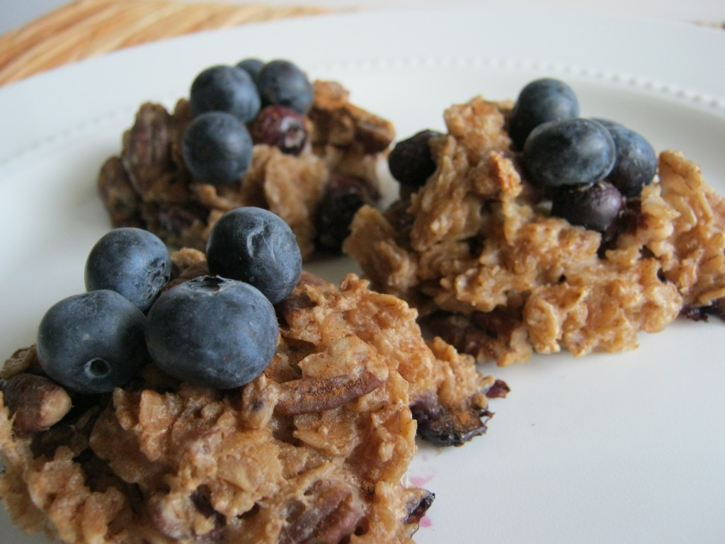 Blueberry Pecan Oatmeal Cookies 019